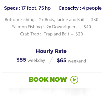 fishing boat rental vancouver boat book now