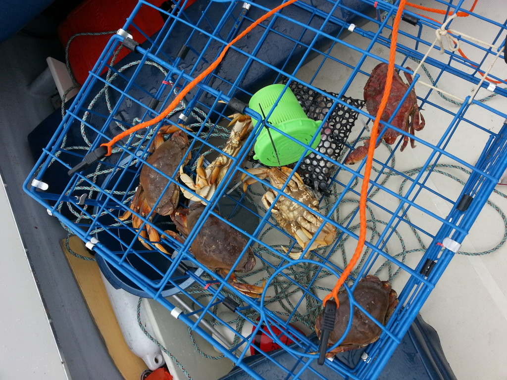 boat rental vancouver crab trap