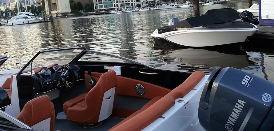 Bayliner Element - 21 foot - 150 horse power